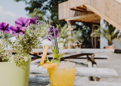 Citybeach Dresden_draußen Getränk und Blume im Fokus