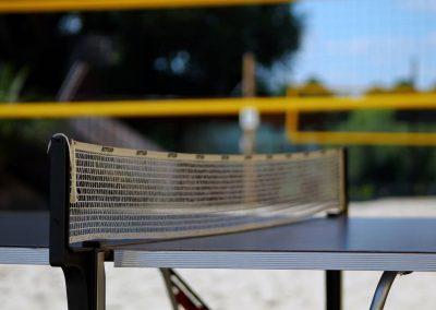 Tischtennis_Citybeachdresden_1500